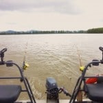 Fraser River Sturgeon Fishing with STS Guiding